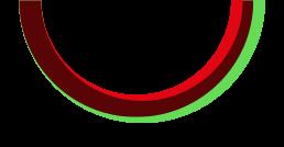 Race to life logo